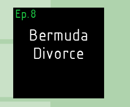 Bermuda Divorce The Artist and The Therapist